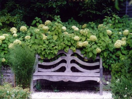 barakura bench.JPG