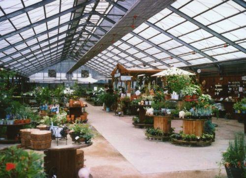 harmony garden(ハーブ苗生産).JPG