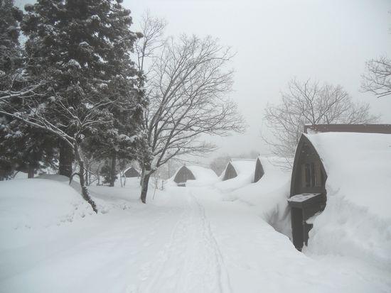 雪の中の森の家コテージ.JPG